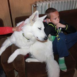 Canis. pobyt - Sv. Štěpán 10/2019